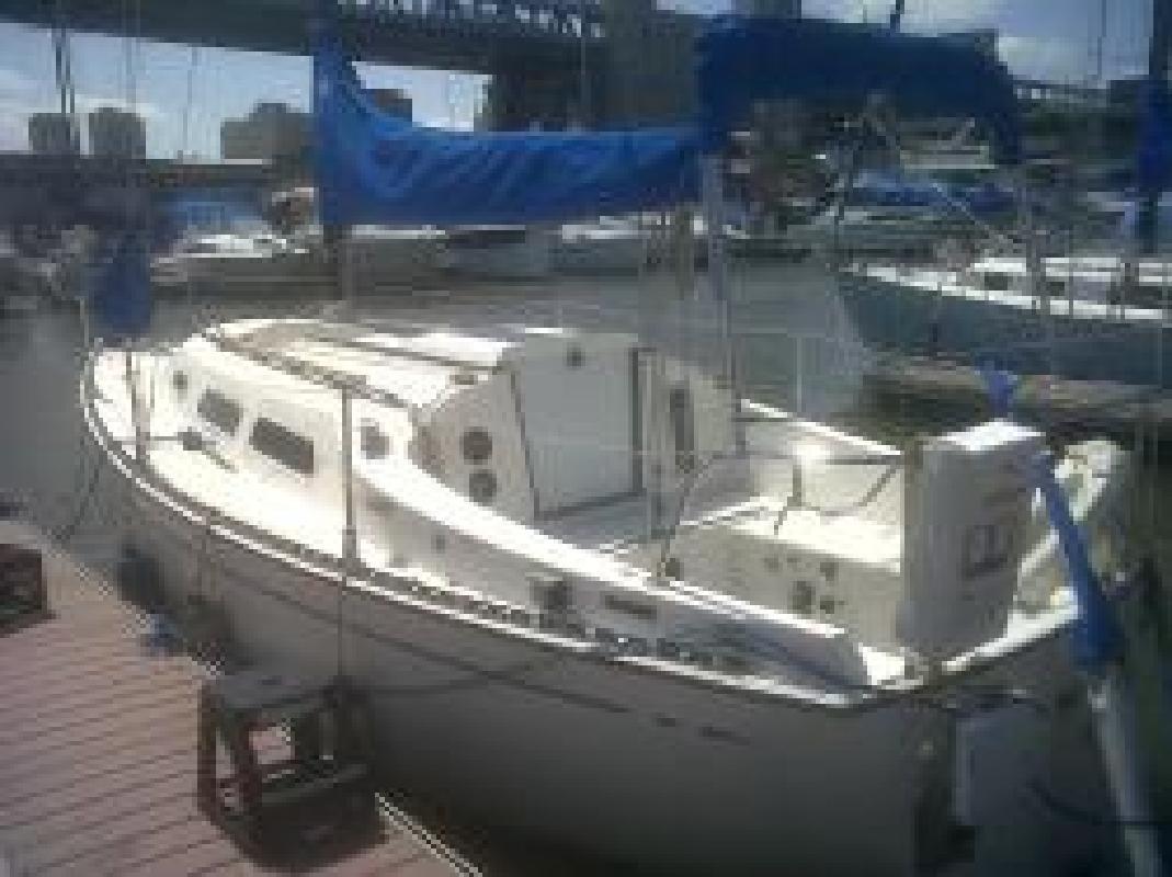 Great Coastal Cruiser