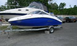 **** W/ROTAX 4-TECH 255HP/BIMINI-TOP/CP-BOW COVERS/TRAILER/*** SEADOO'S LINE OF PERSONAL WATERCRAFT ALSO INCLUDES A LINE OF JET BOATS, PERFECT FOR THAT DAY OR WEEKEND OF FUN ON THE WATER. THIS IS THE 1800 CHALLENGER, IT IS EXCITING AND FUN TO DRIVE FROM